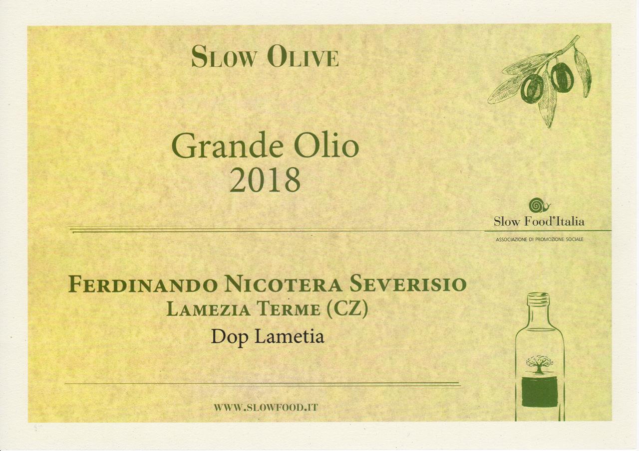 Tra i migliori oli extravergine di Calabria: il Dop Lametia Nicotera Severisio ottiene il premio Slow Food